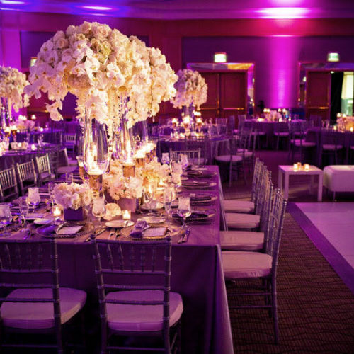 modern-wedding-reception-design-with-purple-lighting-white-orchid-centerpieces.full